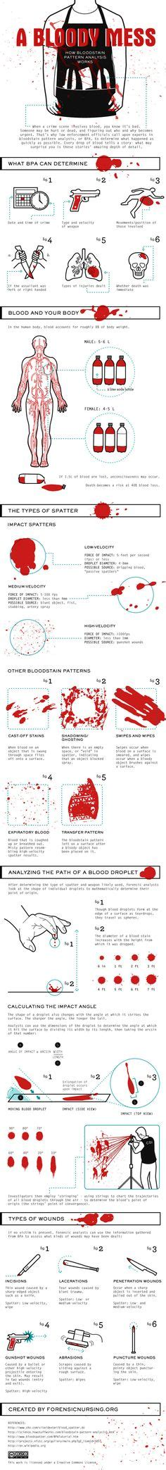 bloodstain pattern analysis how stuff works infographic what are the hardest languages to learn