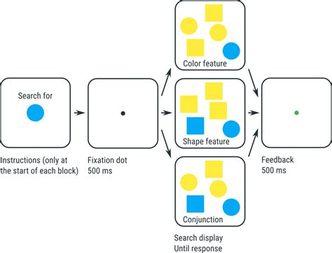 Visual Search Intermediate Tutorial Visual Search Opensesame Documentation