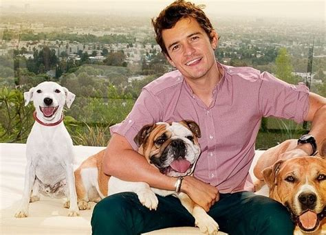 orlando puppies 17 best images about orlando bloom on halle berry baby liv and