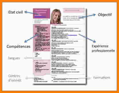 Exemple Bon Cv by Exemple Bon Cv Aikidobeaujolais