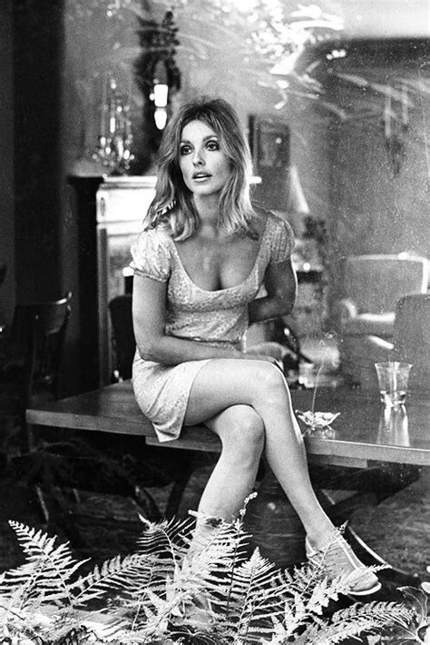 136 best images about sharon tate murder on pinterest 25 best ideas about sharon tate on pinterest sharon