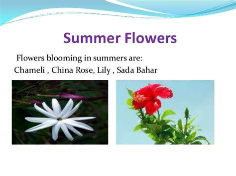 Aditya Sharma Mba Columbia by Winter Season Flowers Names In India Thin