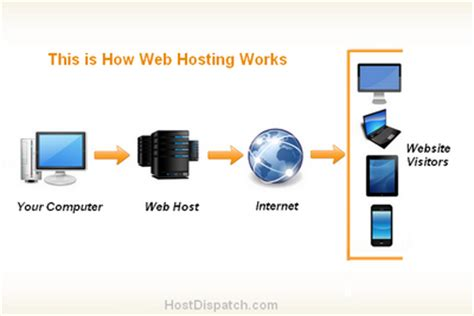 what website what is web hosting the definitive guide