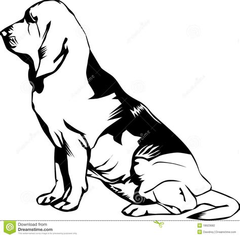 bloodhound coloring pages coloring coloring pages