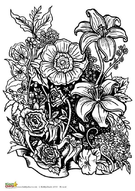coloring pages for adults flowers four free flower coloring pages for adults