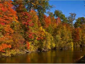 fall colors in michigan fall color outlook for michigan be patient dearborn mi