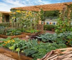backyard gardening effective ideas for backyard gardening gardening tips