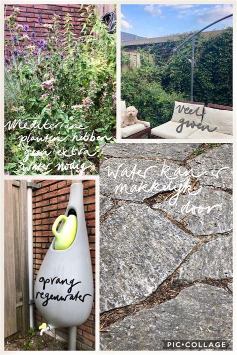 rainproof tuin groen dak maakt rainproof tuin compleet amstelveen rainproof