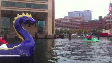 paddle boats harbor baltimore inner harbor dragon paddle boats youtube