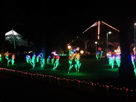 Festival Of Lights Moody Gardens by Best Lights In Houston Clumsy Crafter