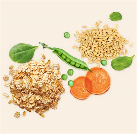 alimenti naturali per gatti beyond alimenti naturali e sani per cani e gatti purina