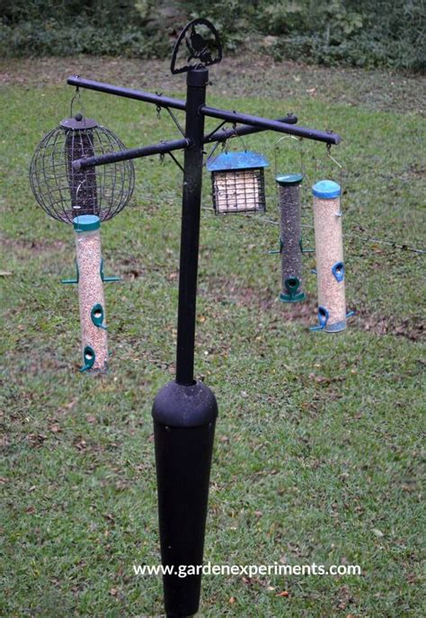 bird feeder pole stops squirrels from reaching seed