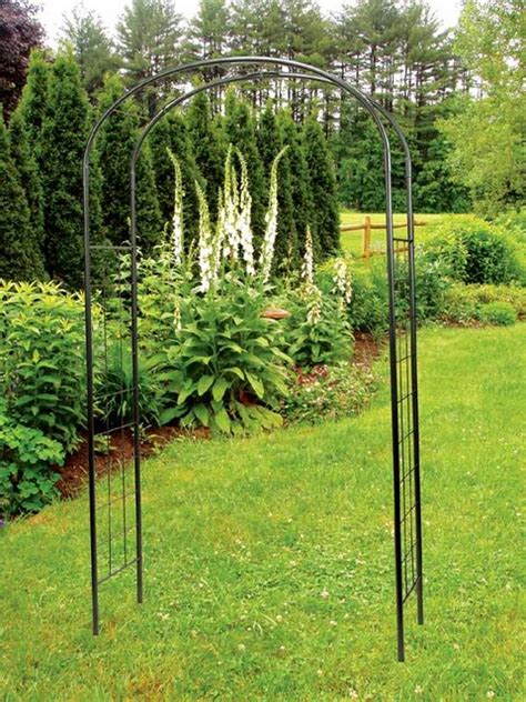 simple metal arbor with ivy trellis contemporary pergolas arbors and trellises by shopladder