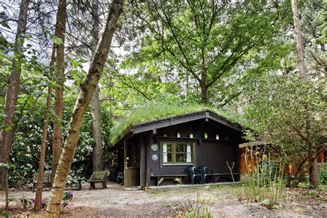 Self Catering Cottages In The New Forest by New Forest Log Cabin Ringwood Let