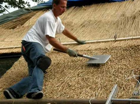 amv roofing and construction thatch buzzpls
