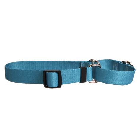 teal collar solid teal standard collar by yellow design