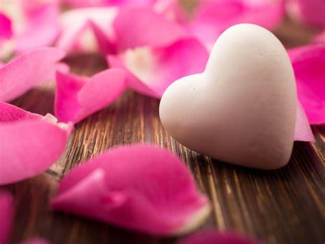 wallpaper love heart rose petals pink  love