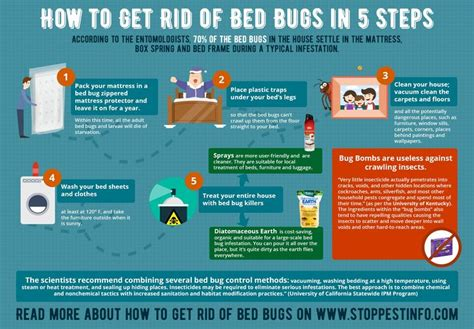 Bed Bug Bombs Do They Work by How To Get Rid Of Bed Bugs With Bombs And Foggers Does It