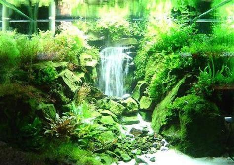 Aquascape Waterfall by Amano The Top An Aqua Waterfall Make Of Sand