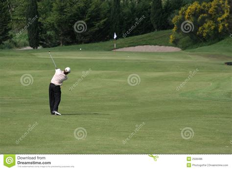 swing man golf man golf swing royalty free stock image image 2508486