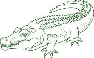Crocodile Image Outline green outline crocodile drago