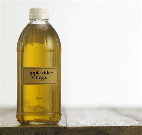 apple cider vinegar for dogs apple cider vinegar for dogs does it really work