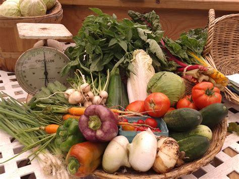 common garden vegetables grow it winter gardening series essential flowers