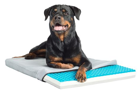 pet cooling bed pet therapeutics theracool gel cell cooling pad with