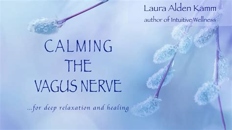 accessing the healing power of the vagus nerve self help exercises for anxiety depression and autism books calming the vagus nerve for relaxation and healing