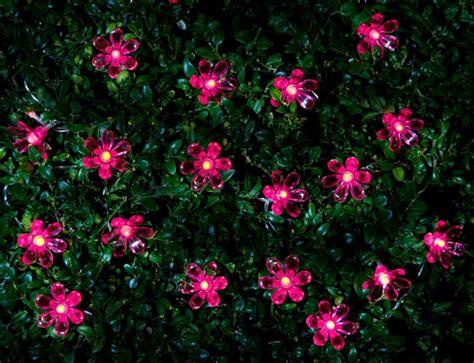 B M Pink Flower String Lights