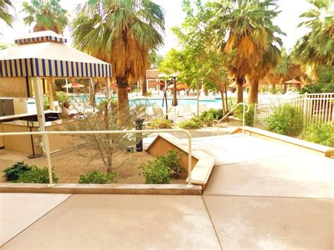 large outdoor pool and patio picture of agua caliente