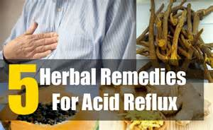 acid reflux home treatment 5 best herbal remedies for acid reflux herbal treatments