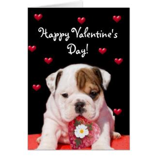 valentines day bulldog cards photocards invitations more