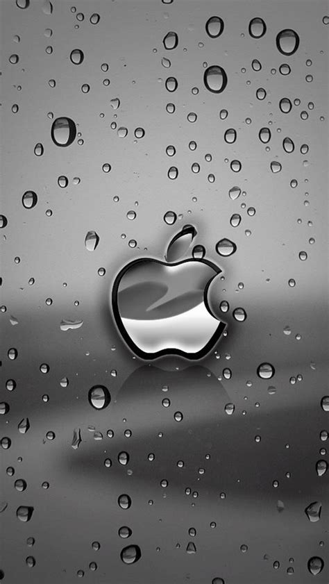 wallpaper iphone 6 silver silver apple logo with water drops background wallpaper
