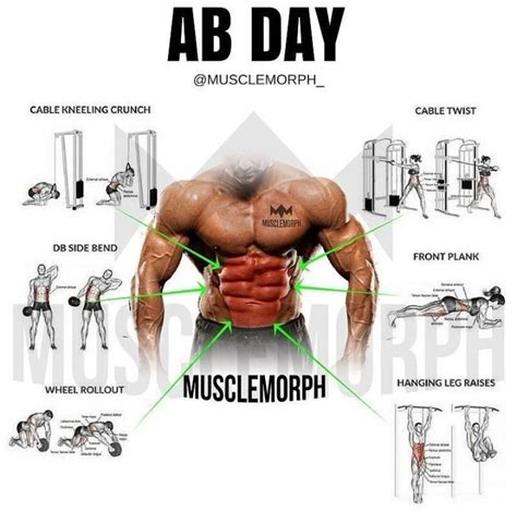 to the max brings out the ab definition and makes the muscles pop virileman5 abs