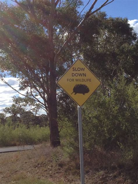 Botanical Garden Signs Sign Botanical Garden Australia Places Australia