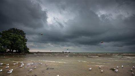 arri鑽e plan bureau hd mer aeyaey oiseaux de phare paysage plages de l oc 233 an