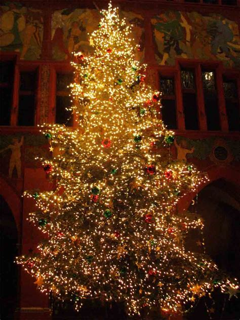 decoration ideas beautiful christmas tree design idea with