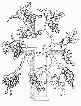 Coloring Page Vine And Branches by Jesus Is The True Vine Sunday School Lesson Bible