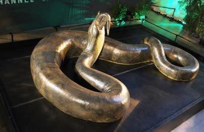 film ular boa 8 ular terbesar di dunia yang pernah tertangkap ilmusiana