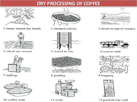 Malabar Washed Process coffee processing technology