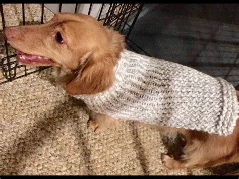 knit dog sweater pattern in the round knitting loom loom knit scarf on round loom no curl