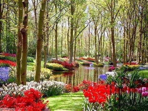 sfondi giardini foto giardini per sfondi settemuse it