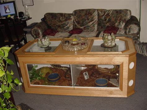 coffee table reptile terrarium coffee table terrarium reptile room