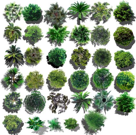 pattern photoshop trees photoshop psd landscape tree blocks 4 cad design free