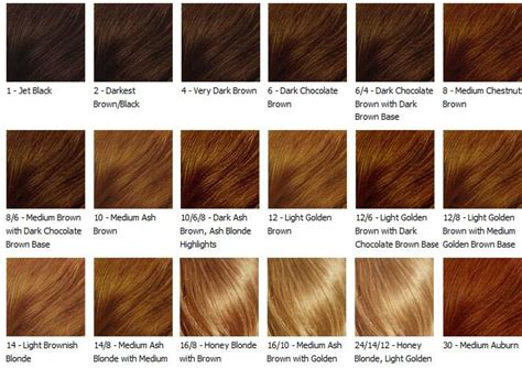 what color is my hair chart black hair color hair color chart