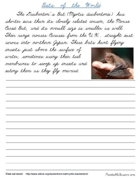 handwriting templates for adults bats of the world cursive printable cursive handwriting
