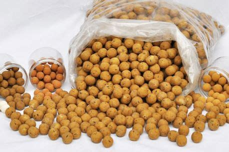 niger seed boilies proper carp baits gold seal bulk frozen 16mm boilies deal johnson ross tackle