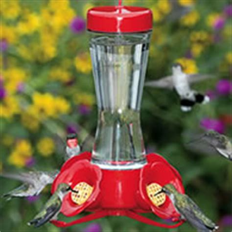 hummingbird supplies ferestien feed farm supplies