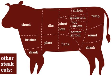 diagram of steak cuts pin steak cut diagram on